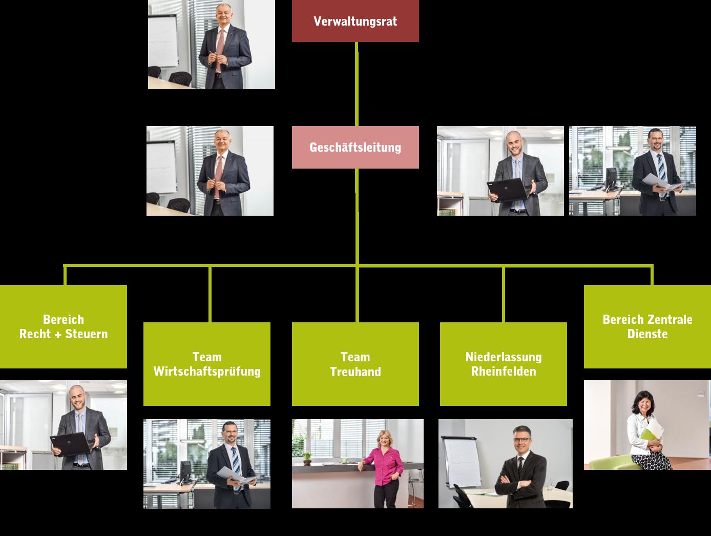 Organisationsstruktur thv AG